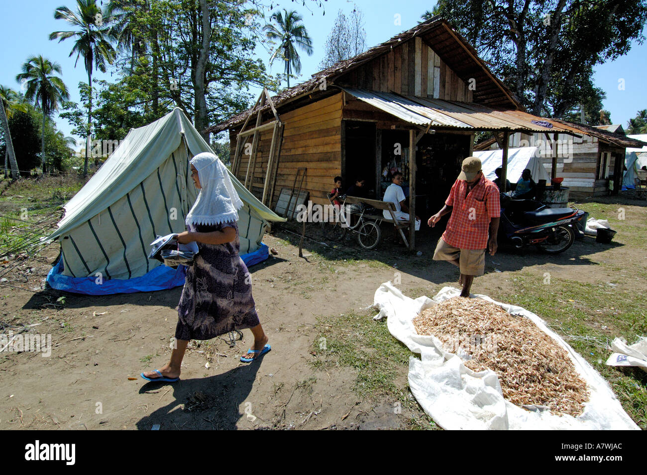 Indonesia Sumatra Meulaboh Post Tsunami Many houses destroyed people live in tents : live in tents - memphite.com