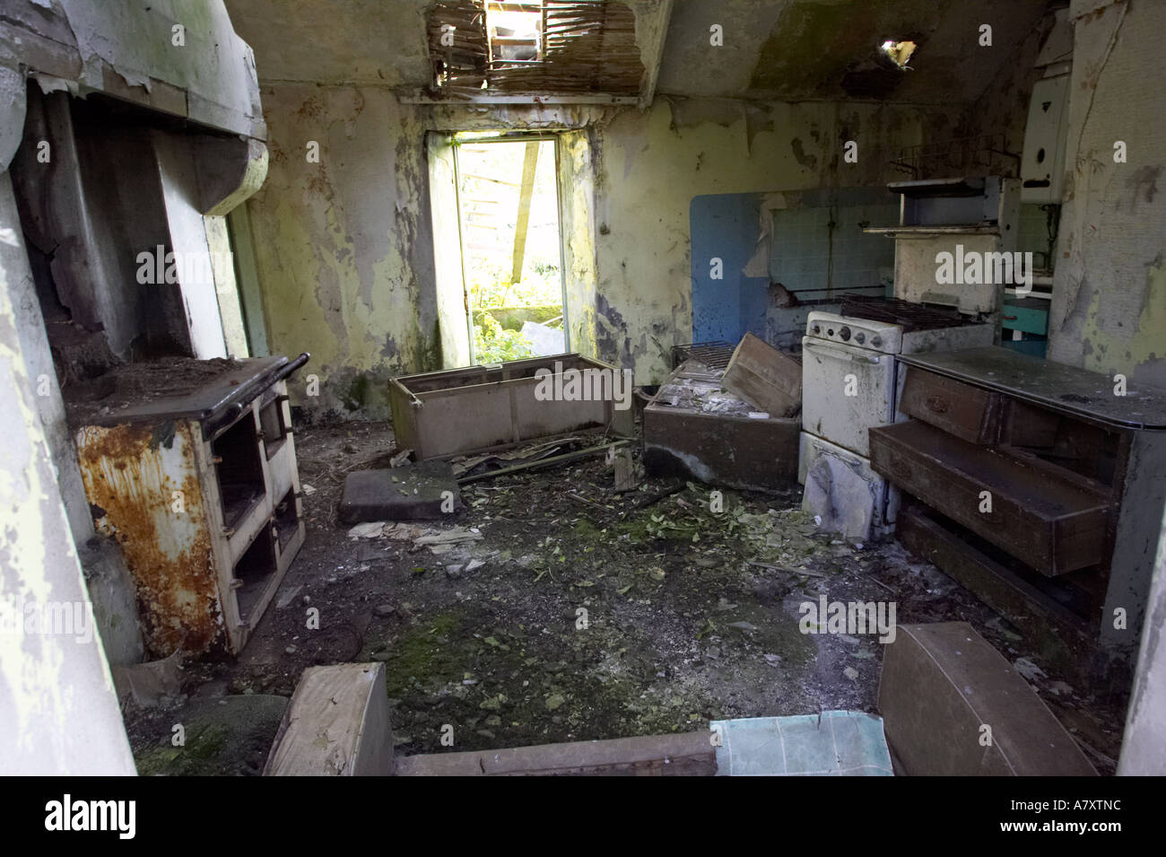 Inside Of Derelict Abandoned Old Irish Cottage Near Fair Head County Antrim Northern Ireland
