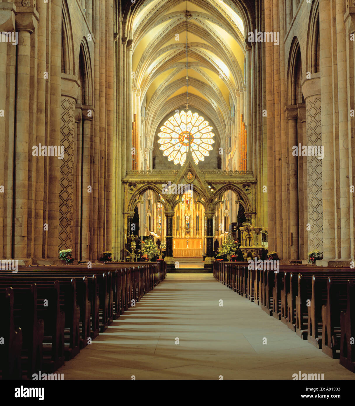 Interior view east along the nave of medieval durham for Catedral de durham interior