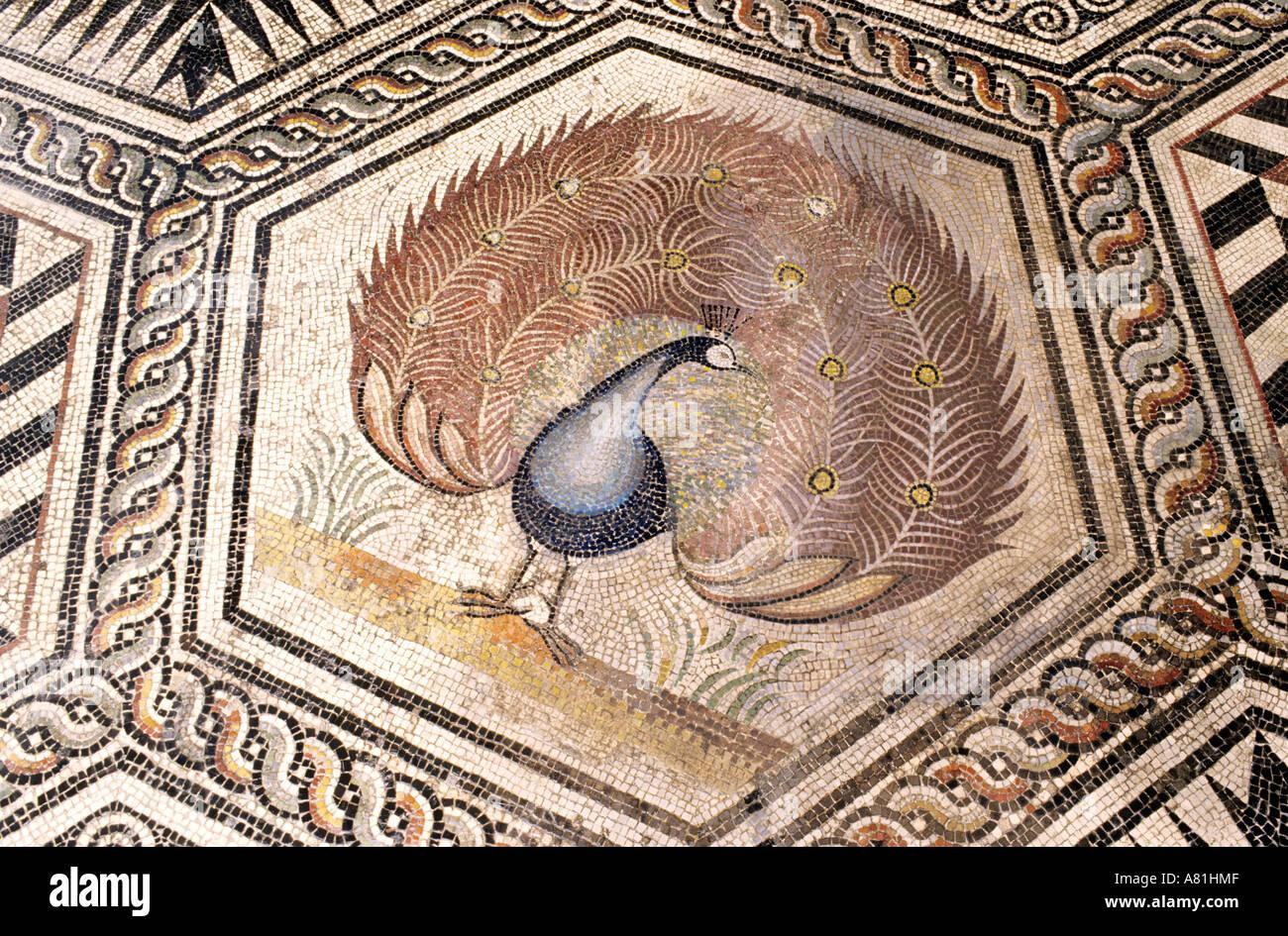 France vaucluse vaison la romaine villa of the peacock mosaic stock photo - La villa romaine antique ...