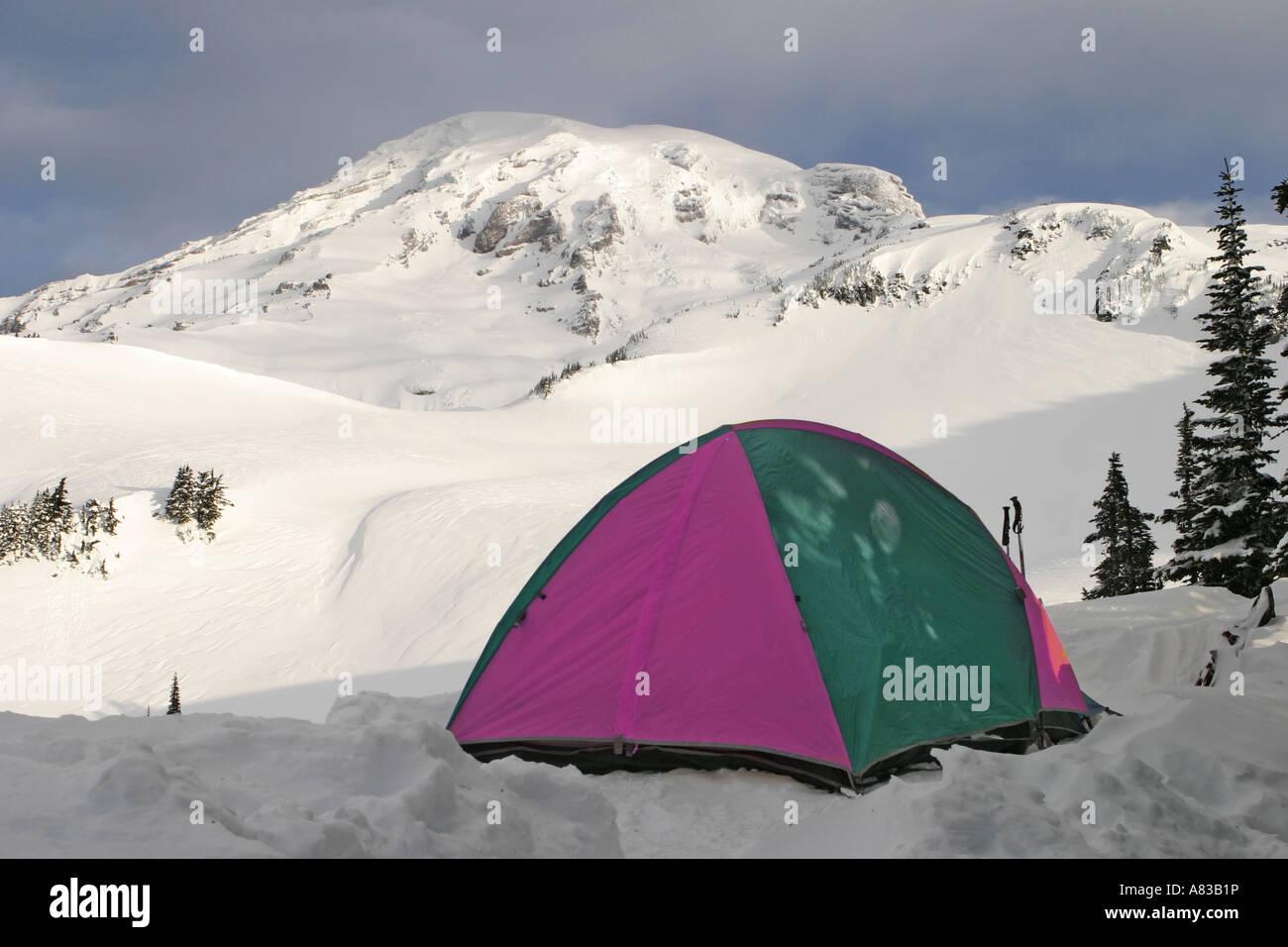 C&ing Tent On Mt. Rainier & Camping Tent On Mt. Rainier Stock Photo Royalty Free Image ...