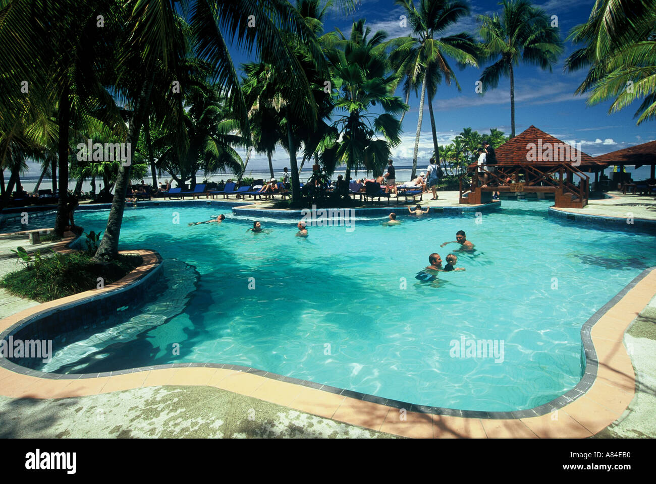 swimming pool warwick fiji resort coral coast fiji south pacific stock photo royalty free image