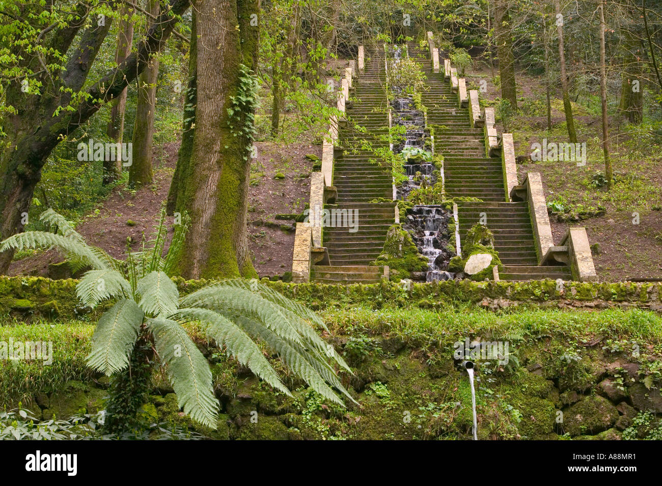 Luso Portugal  city photos gallery : Gardens In The Bussaco Forest, Luso, Portugal Stock Photo, Royalty ...