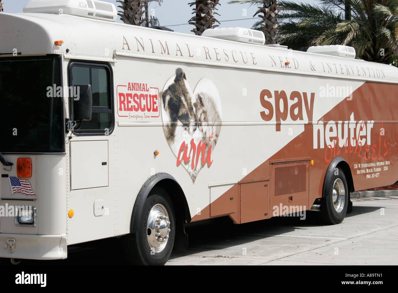 Animal Rescue Daytona Beach Fl