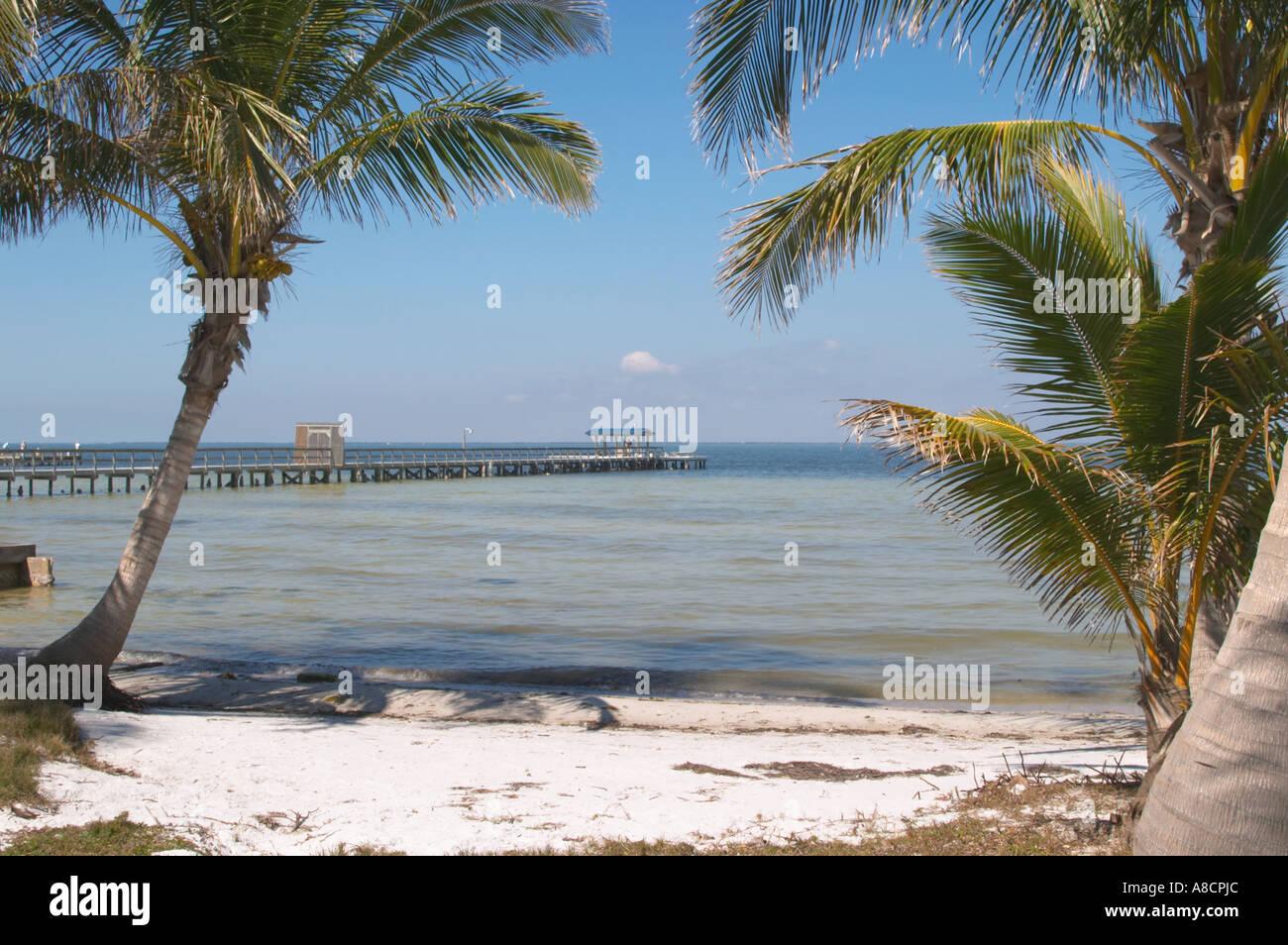 Beach Pine Island Florida
