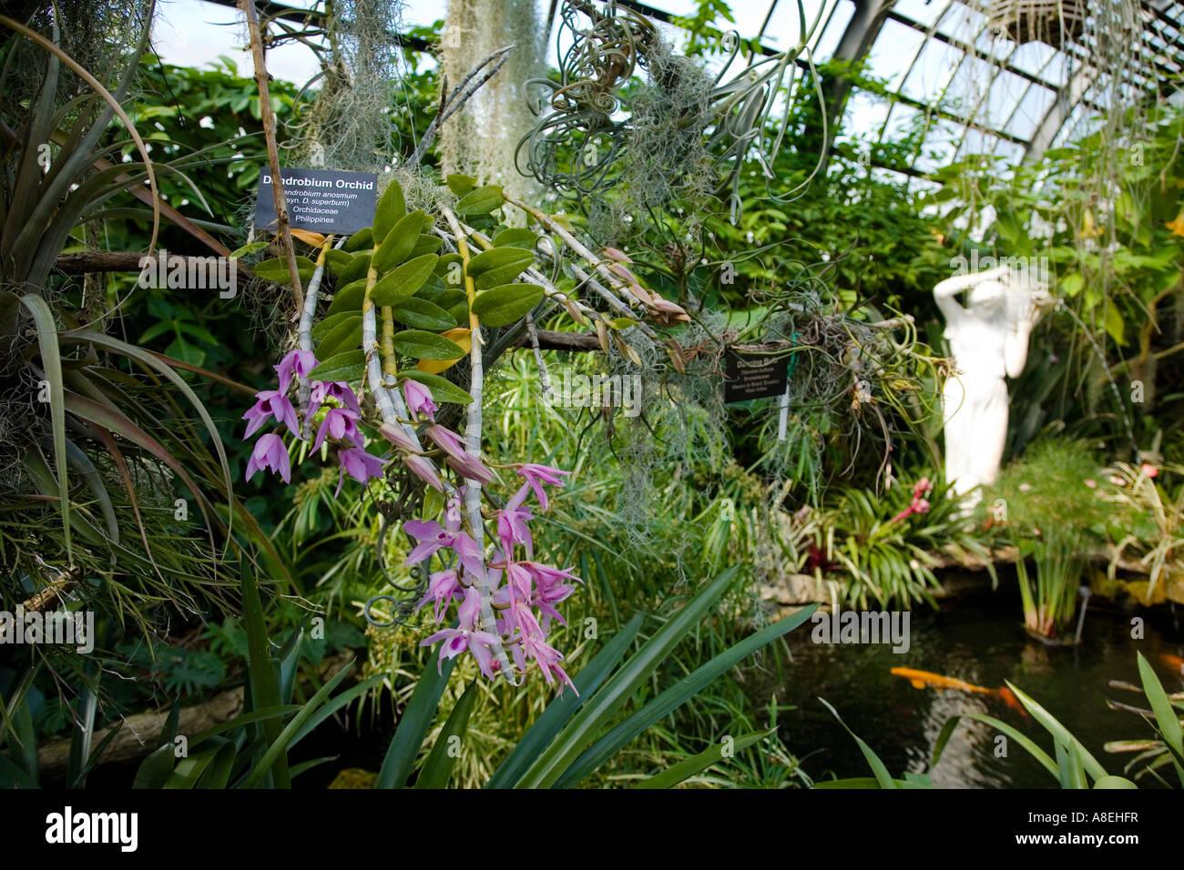 Botanical Gardens Chicago Indoor Garden Ftempo