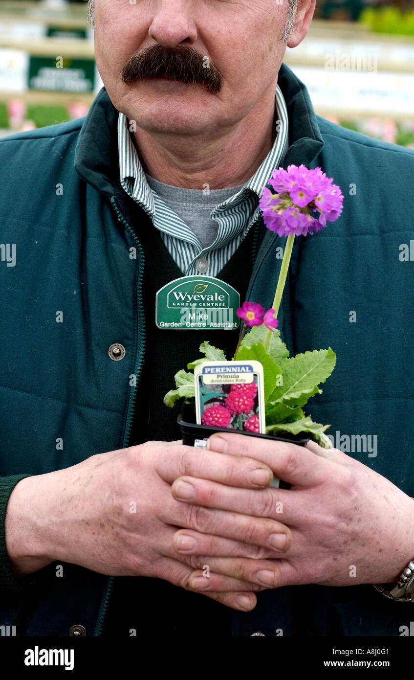Marvelous A Wyevale Garden Centre Assistant Holds A Primula In A Pot At A  With Glamorous A Wyevale Garden Centre Assistant Holds A Primula In A Pot At A Wyevale  Garden Centre In Brighton Sussex With Beauteous Wall Mounted Solar Garden Lights Also Garden Torch Oil In Addition Kirstenbosch Gardens And La Tasca Covent Garden As Well As Garden Sheds West Midlands Additionally Gardening Contractors From Alamycom With   Glamorous A Wyevale Garden Centre Assistant Holds A Primula In A Pot At A  With Beauteous A Wyevale Garden Centre Assistant Holds A Primula In A Pot At A Wyevale  Garden Centre In Brighton Sussex And Marvelous Wall Mounted Solar Garden Lights Also Garden Torch Oil In Addition Kirstenbosch Gardens From Alamycom