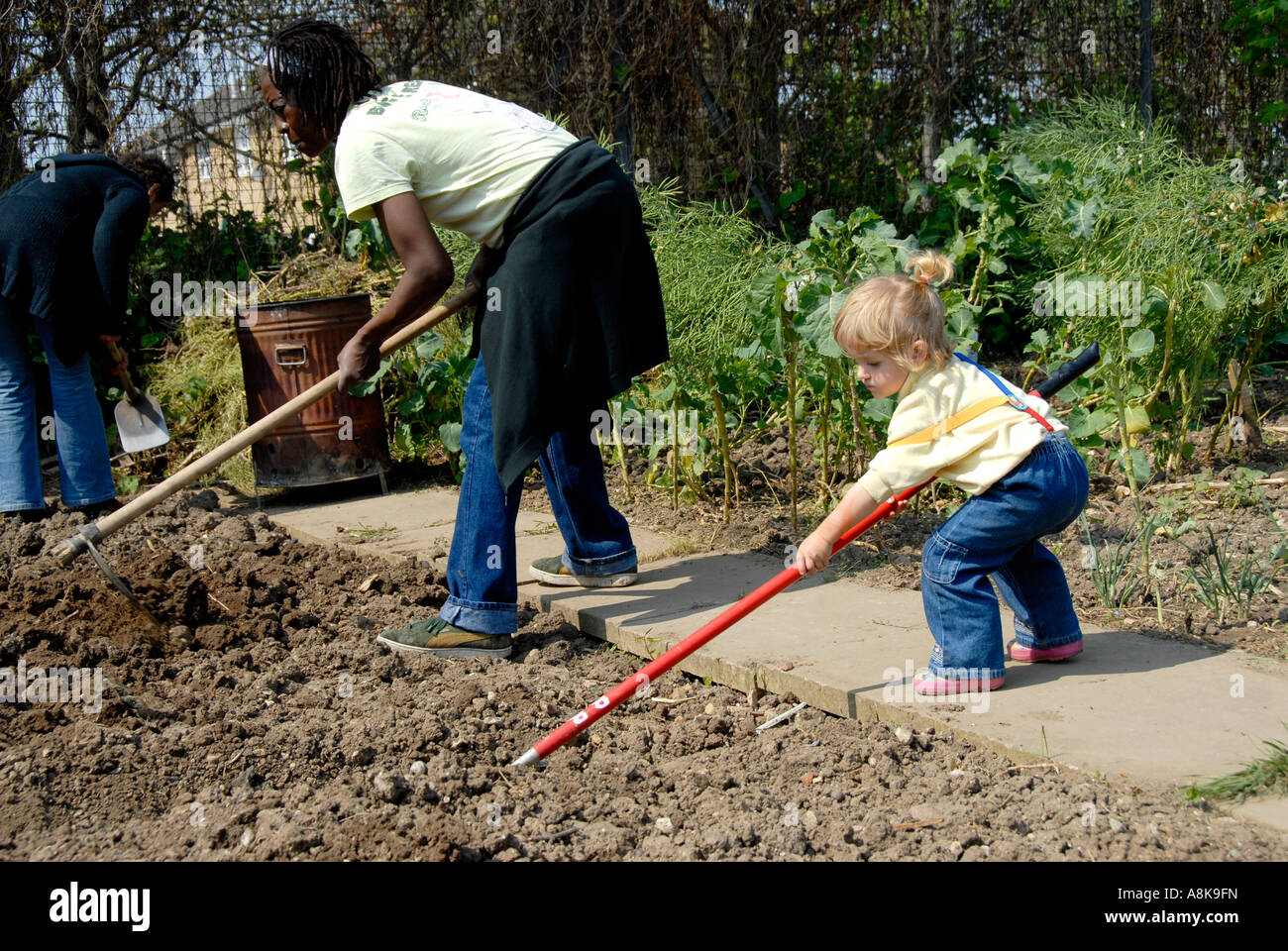 Woman And Child Hoeing To Prepare Soil To Grow Vegetables In London  Allotment In Peckham