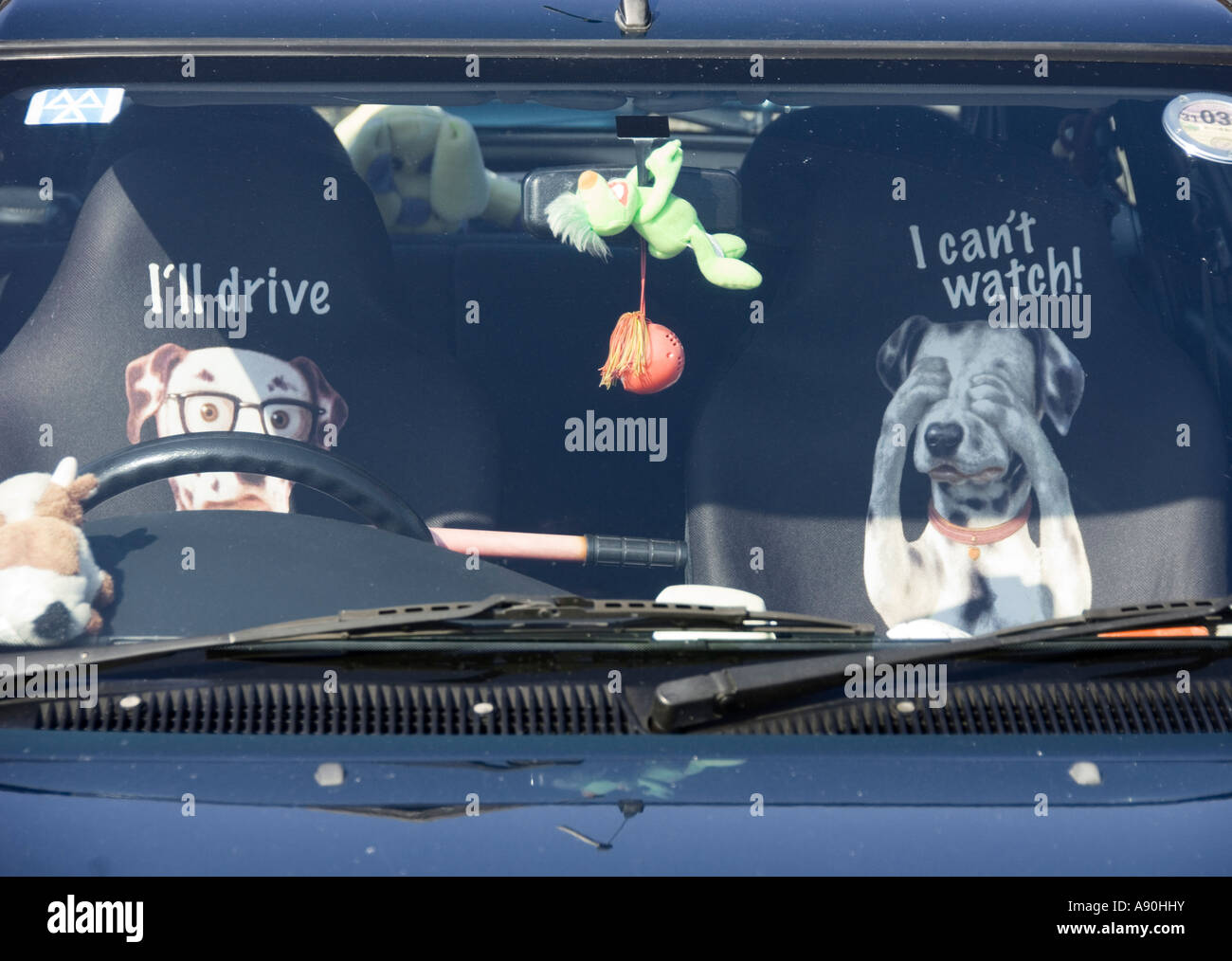Comical Seat Covers Seen Through Windscreen Of Car With Dog