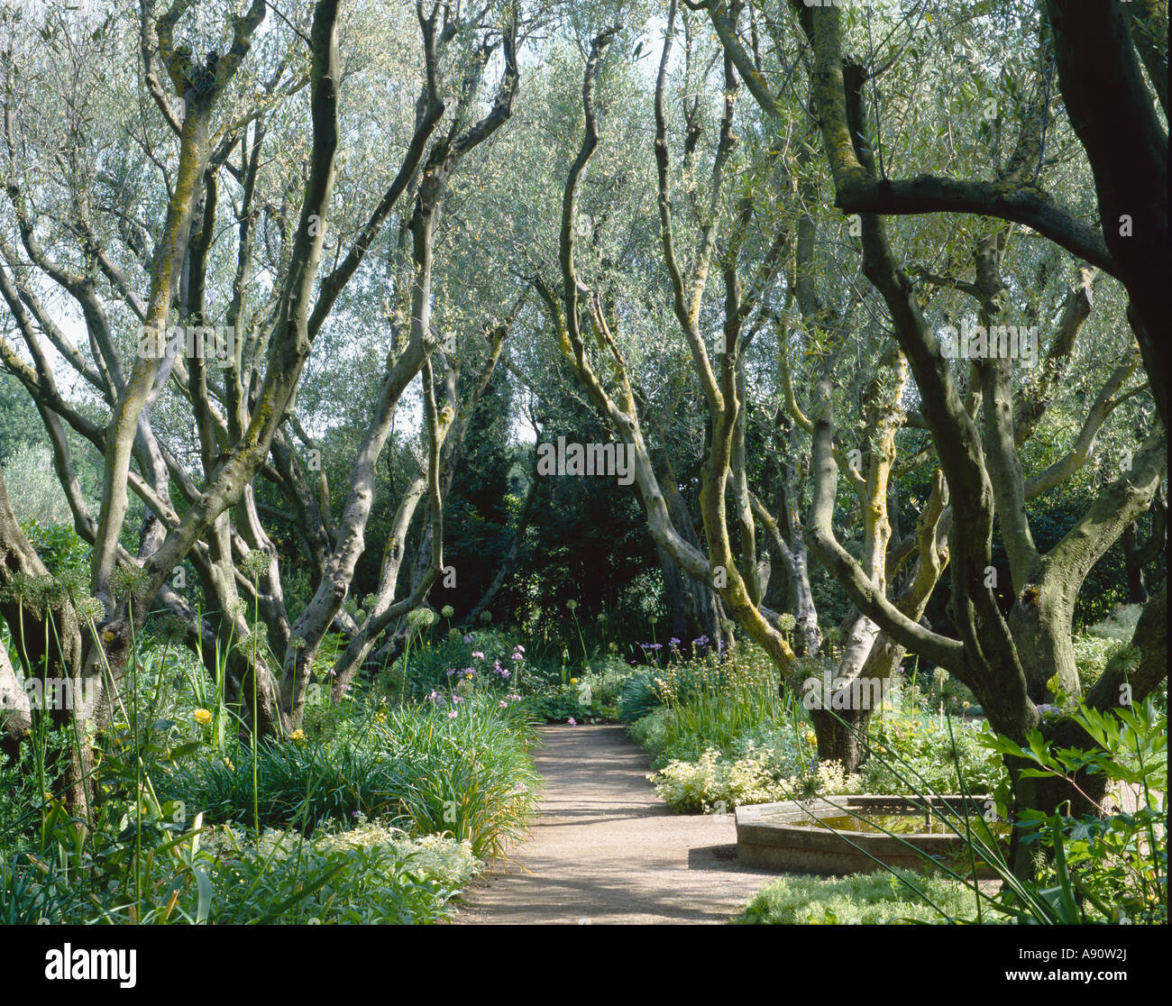 The garden of la landriana giardini della landriana for Garden giardini