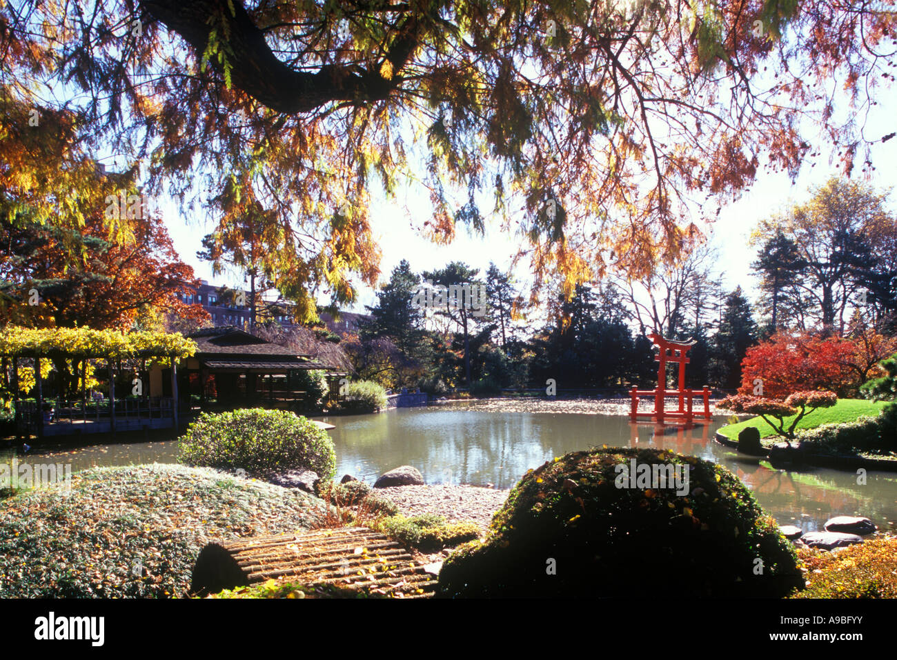 BRIDGE JAPANESE GARDEN BROOKLYN BOTANICAL GARDEN NEW YORK CITY USA Stock Photo Royalty Free ...