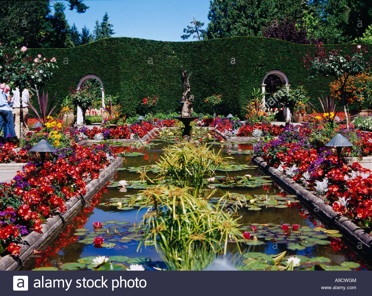 Images of butchart gardens with images of butchart gardens elegant stock photo the butchart gardens italian garden flower victoria canada with images of butchart gardens altavistaventures Choice Image