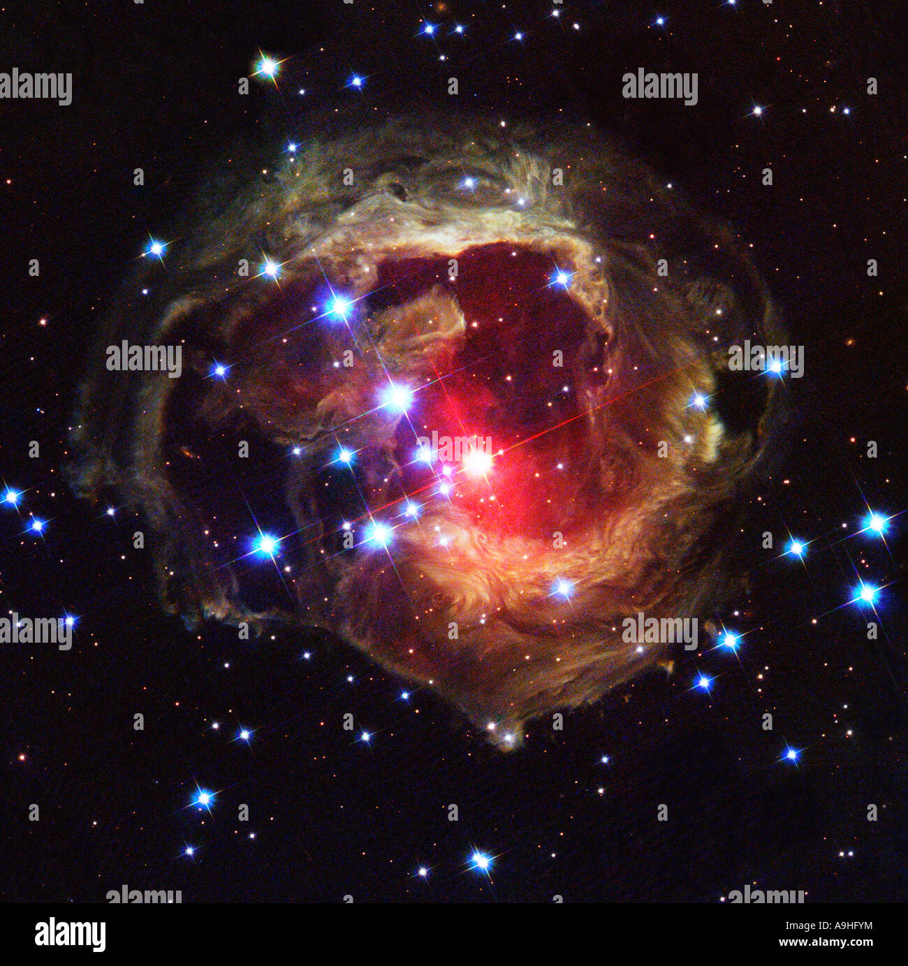 Image Gallery hubble red supergiant