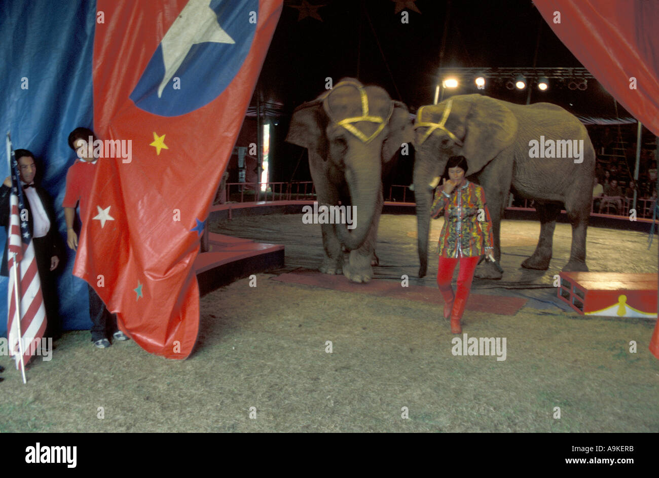 Brothers circus owner leaves big top w 2 two asian elephants after show roustabout flag American US United States & Bentley Bros. Brothers circus owner leaves big top w 2 two asian ...