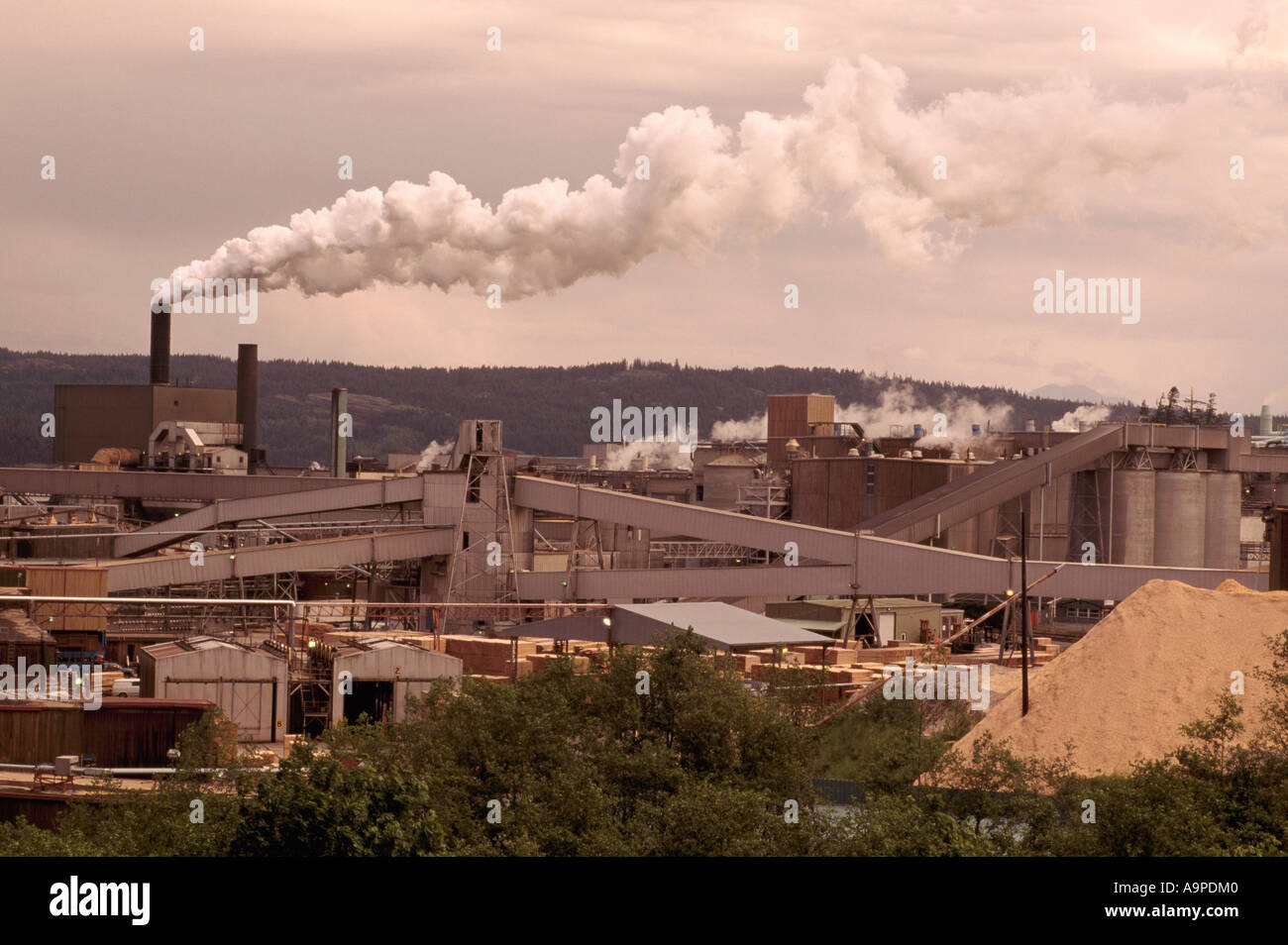 Campbell River, Bc, Vancouver Island, British Columbia, Canada  Elk Falls  Pulp & Paper Mill, Air Pollution And Emissions