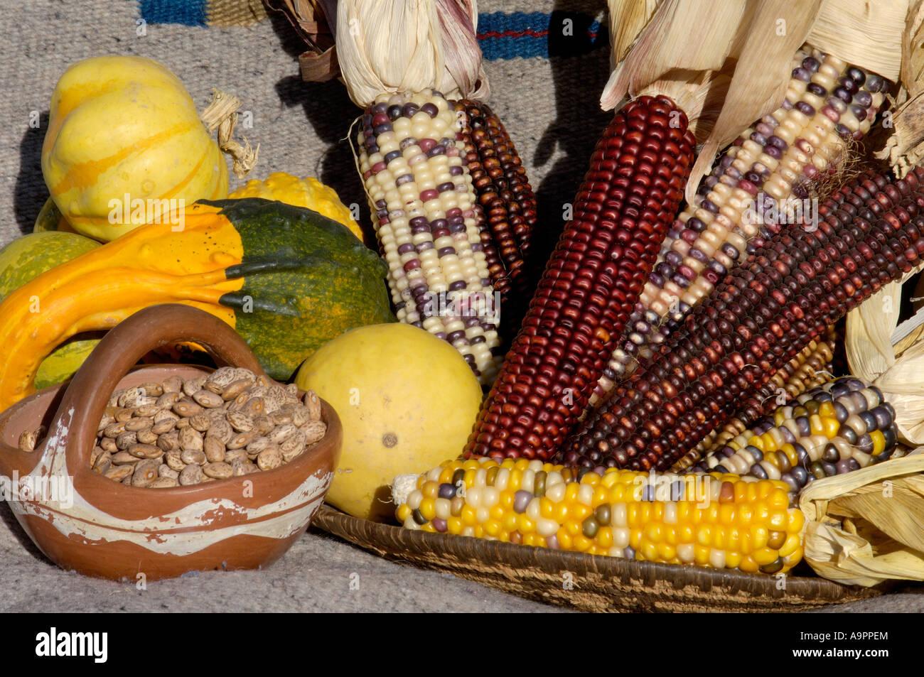 Image Result For American Corn Farm