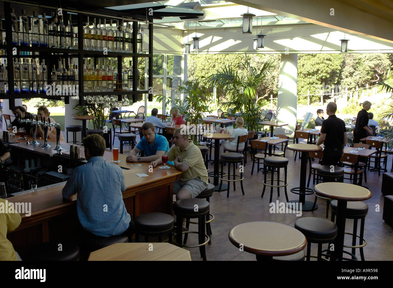 san francisco california the bar of the park chalet in golden gate stock photo royalty free