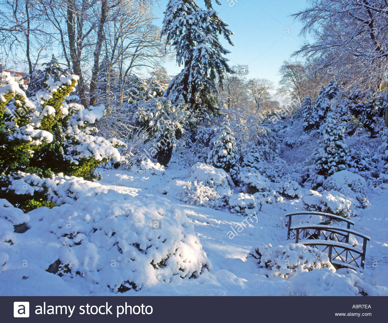 johnston gardens aberdeen city and rare fall of fresh snow giving