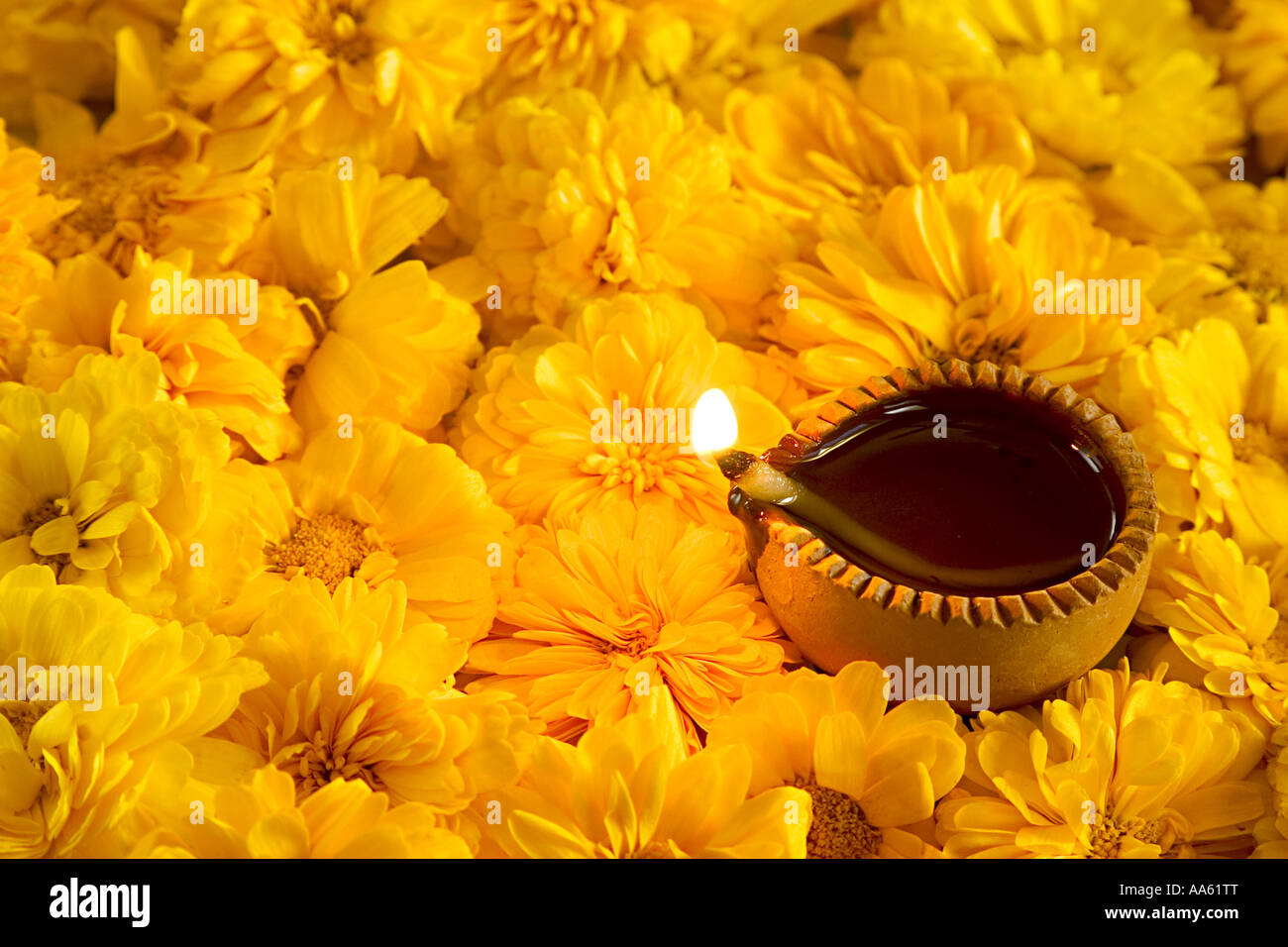 Hybrid zinnia flowers yellow color and auspicious clay oil lamp to hybrid zinnia flowers yellow color and auspicious clay oil lamp to celebrate diwali indian festival of lights in india asia dhlflorist Image collections