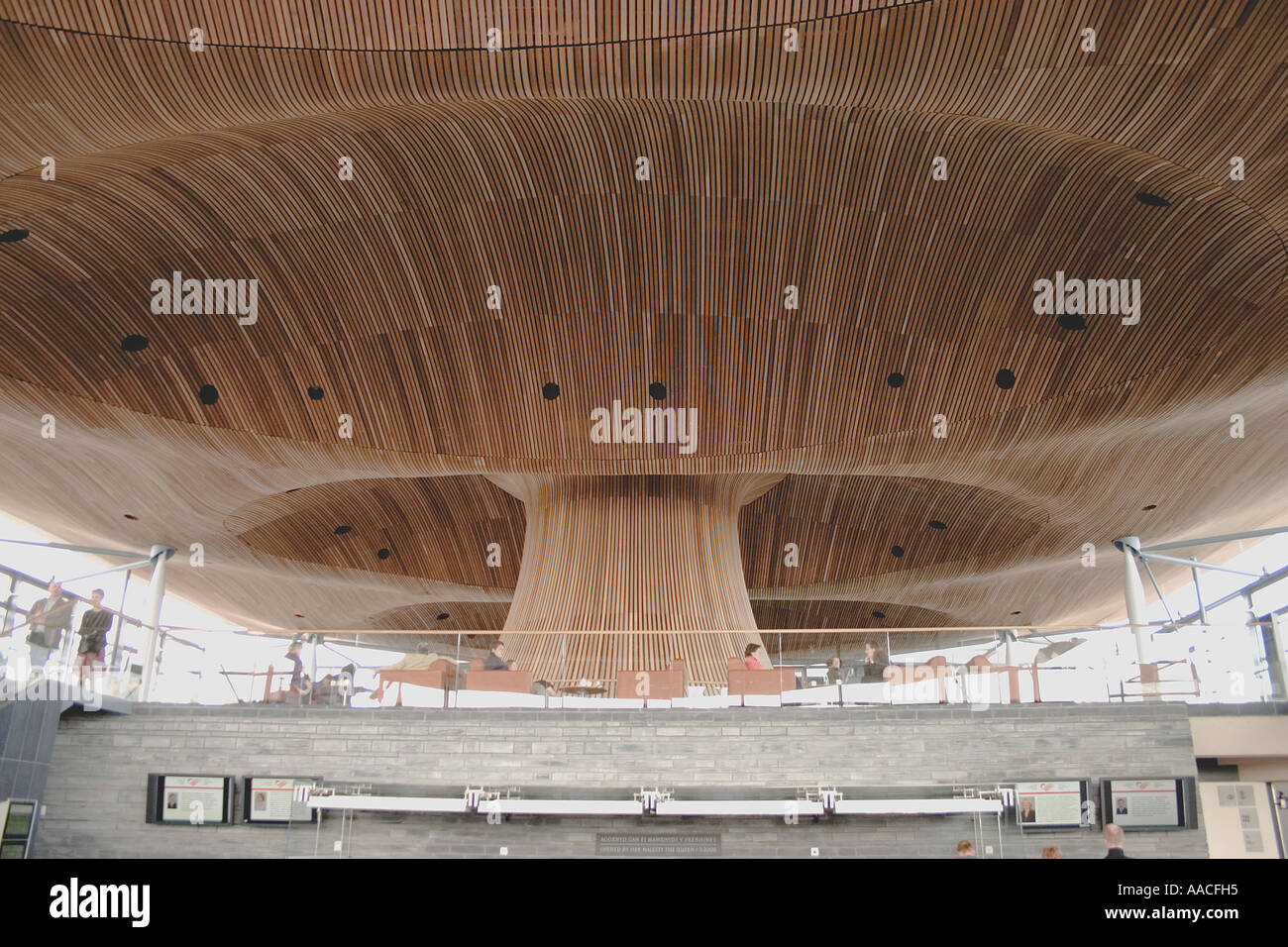 wood strip acoustic ceiling of the welsh assembly government senedd stock photo royalty free. Black Bedroom Furniture Sets. Home Design Ideas