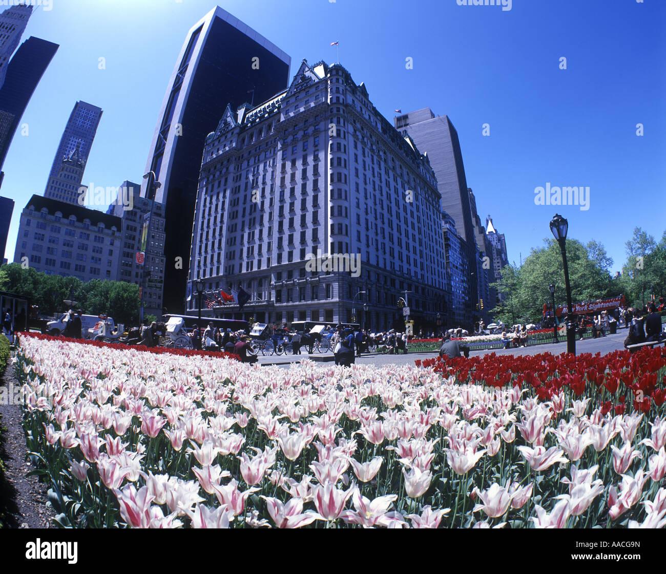 Plaza Hotel New York Fifth Avenue Stock Photos & Plaza Hotel New ...