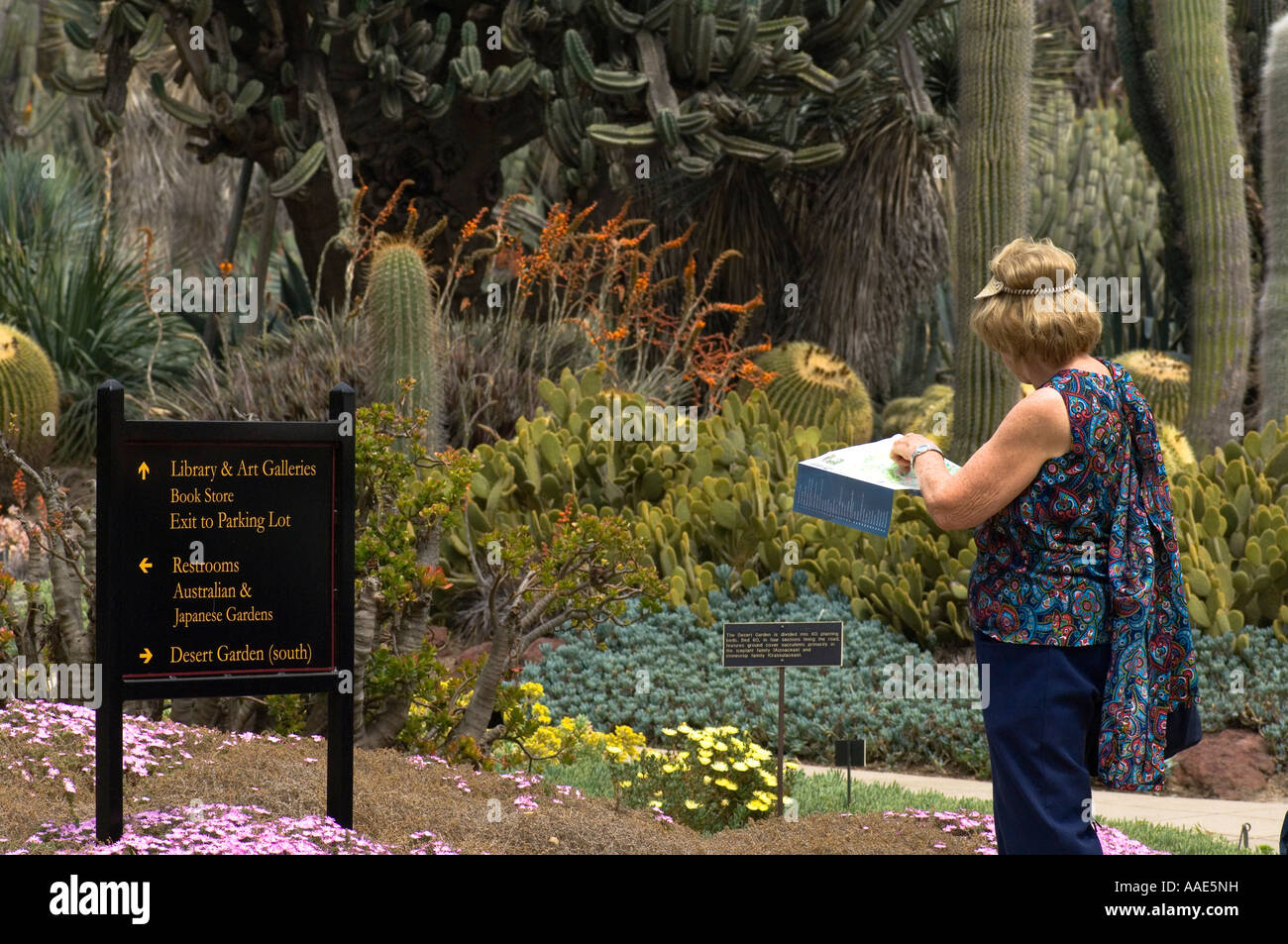 Elderly Woman Looking For Directions On The Map Of Botanical Garden