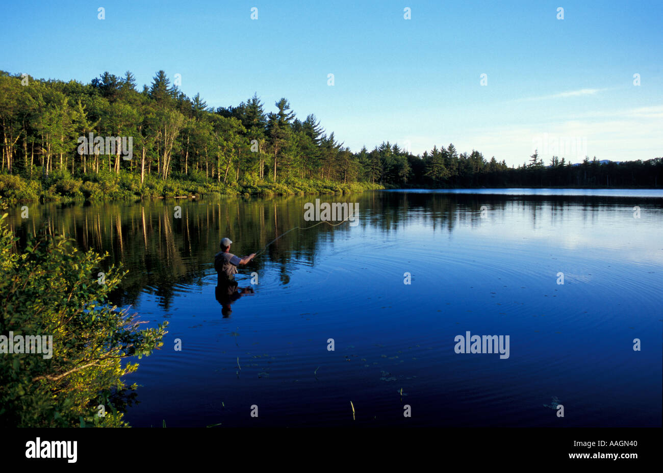 Image result for trout pond nh stacy