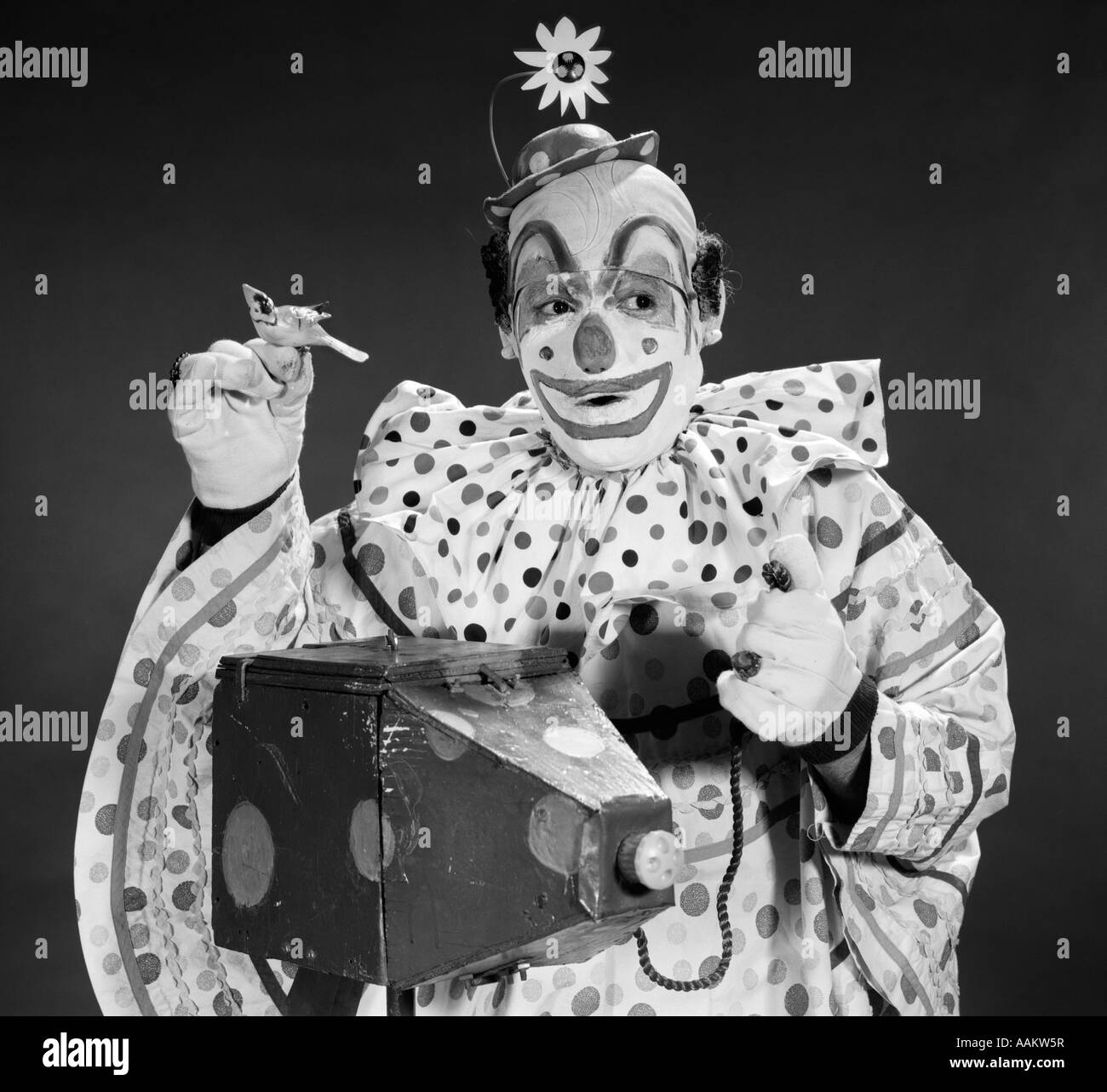 whiteface clown stock photos u0026 whiteface clown stock images alamy