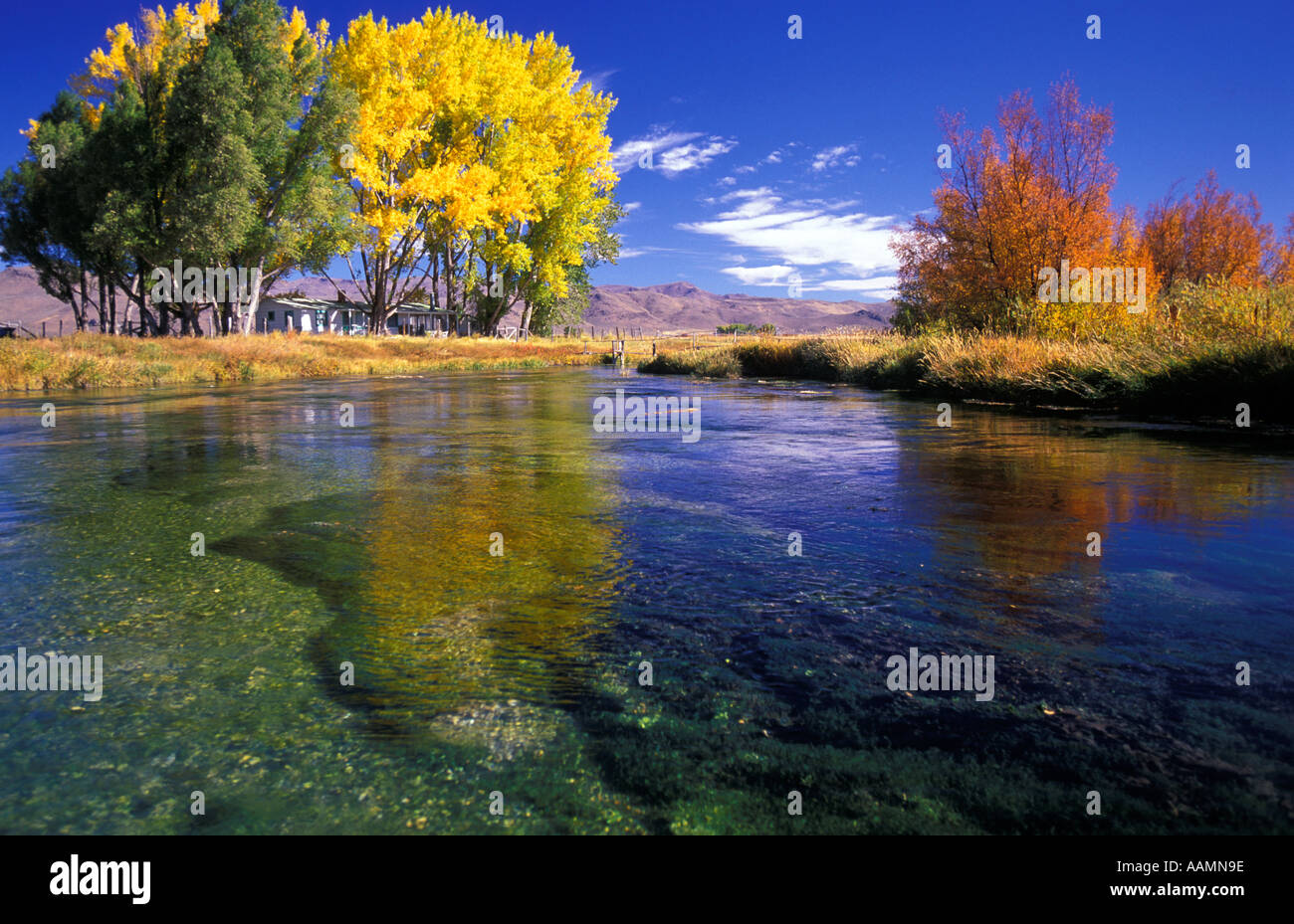 Idaho autumn scenic of silver creek hemingways favorite for Silver creek idaho fishing