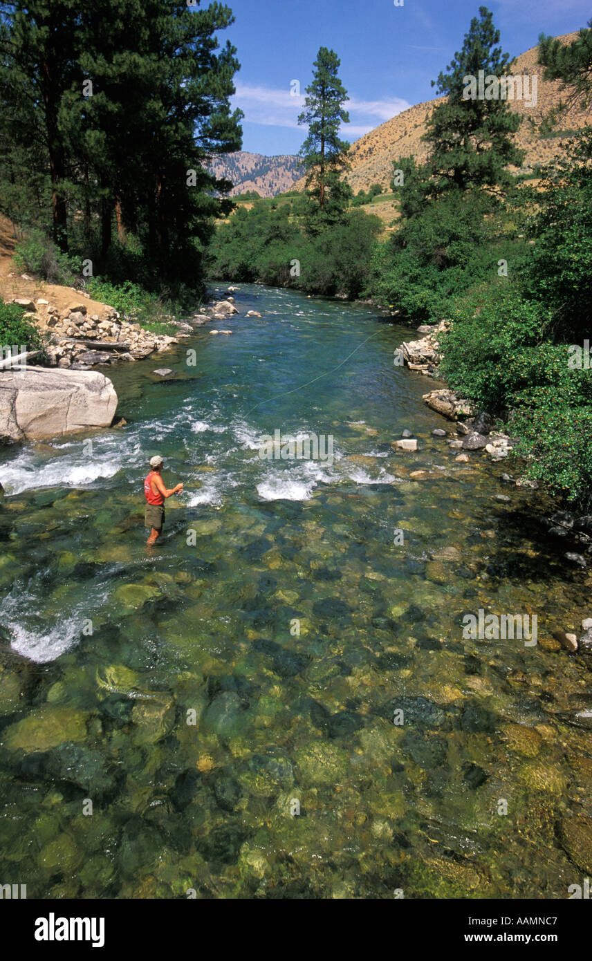 Idaho man fly fishing in loon creek middle fork of salmon for Fly fishing idaho