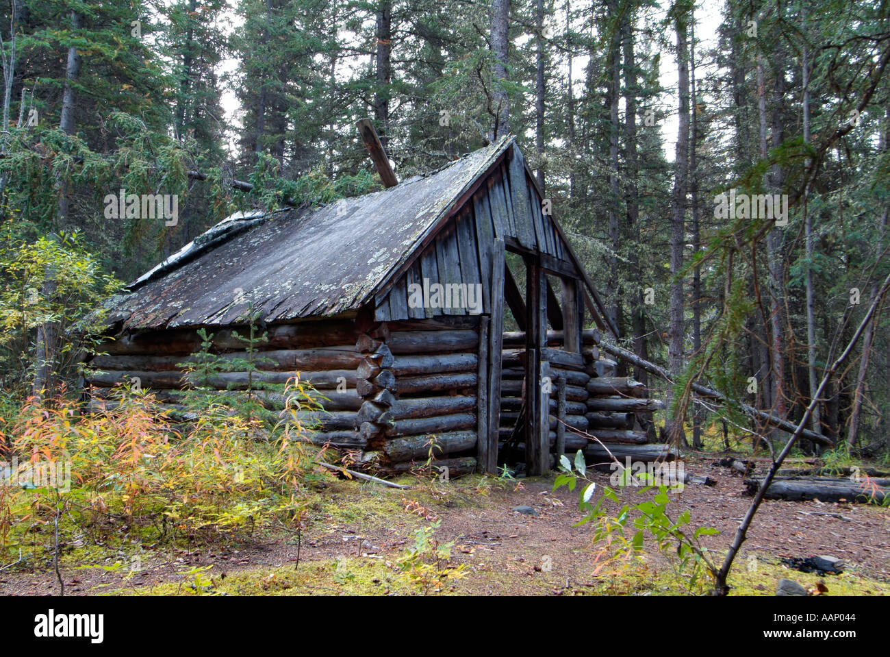 Remains Of Log Cabins At Masons Landing Teslin River