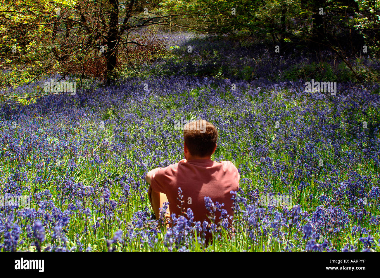 bluebell men Bluebell tattoos - what do they mean tattoo designs & symbols - bluebell tattoo meanings.