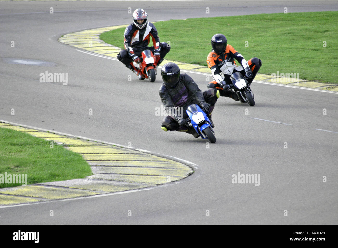 Small Tiny Mini Moto Minimoto Bike Motorbike Motorcycle Monkey Monkeybike  Bike Race Racetrack Track Knee Down