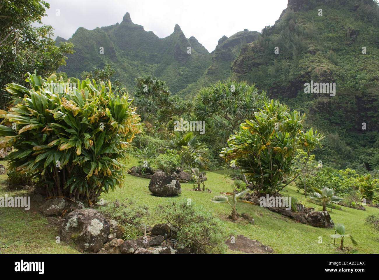 Limahuli Garden And Preserve, National Tropical Botanical Gardens, Kauai,  Hawaii