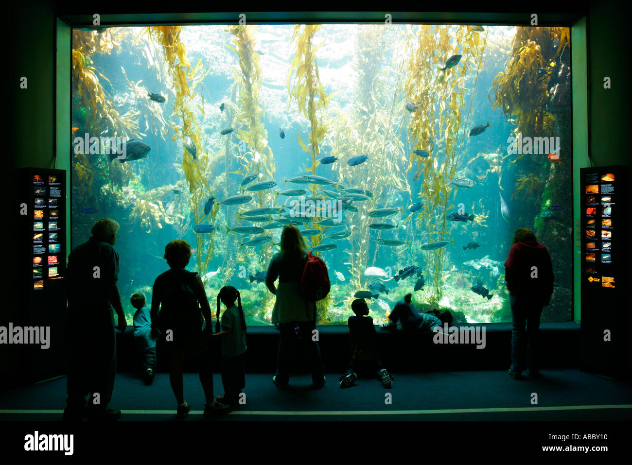 Birch Aquarium At Scripps La Jolla California Sd Stock