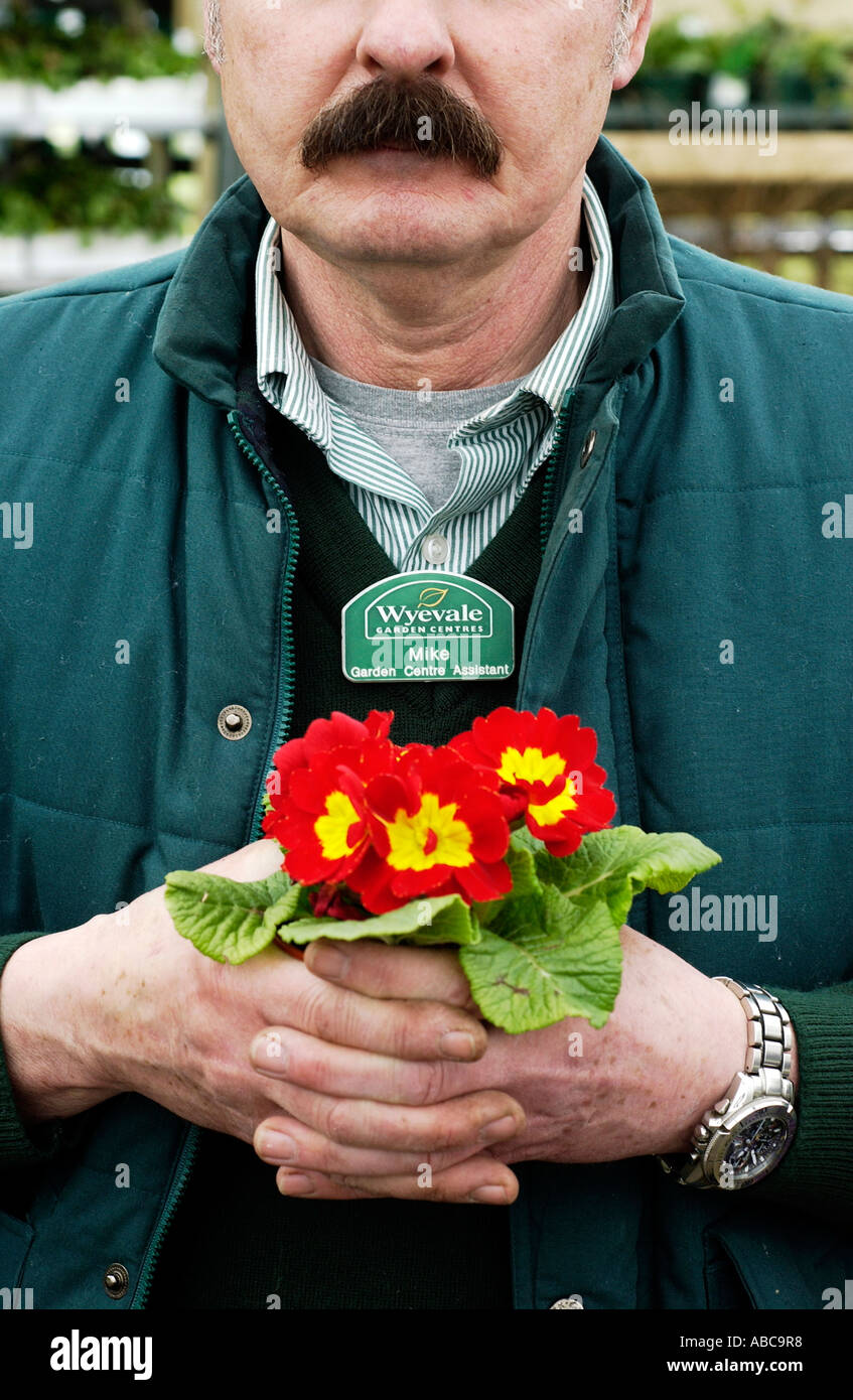 Pleasant A Wyevale Garden Centre Assistant Holds Primulas In A Wyevale  With Foxy A Wyevale Garden Centre Assistant Holds Primulas In A Wyevale Garden Centre  At Brighton Sussex With Amazing Garden Water Storage Also Garden Swing Chair Bq In Addition Ming Garden Derby And Garden Centre Wilmslow As Well As Garden Water Drainage Additionally Sandhurst Gardens From Alamycom With   Foxy A Wyevale Garden Centre Assistant Holds Primulas In A Wyevale  With Amazing A Wyevale Garden Centre Assistant Holds Primulas In A Wyevale Garden Centre  At Brighton Sussex And Pleasant Garden Water Storage Also Garden Swing Chair Bq In Addition Ming Garden Derby From Alamycom
