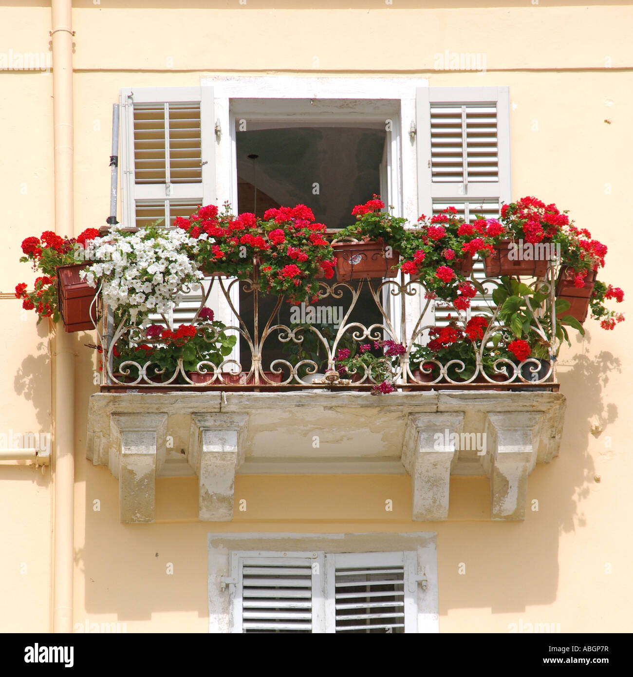 Photo collection balcony flower and old.