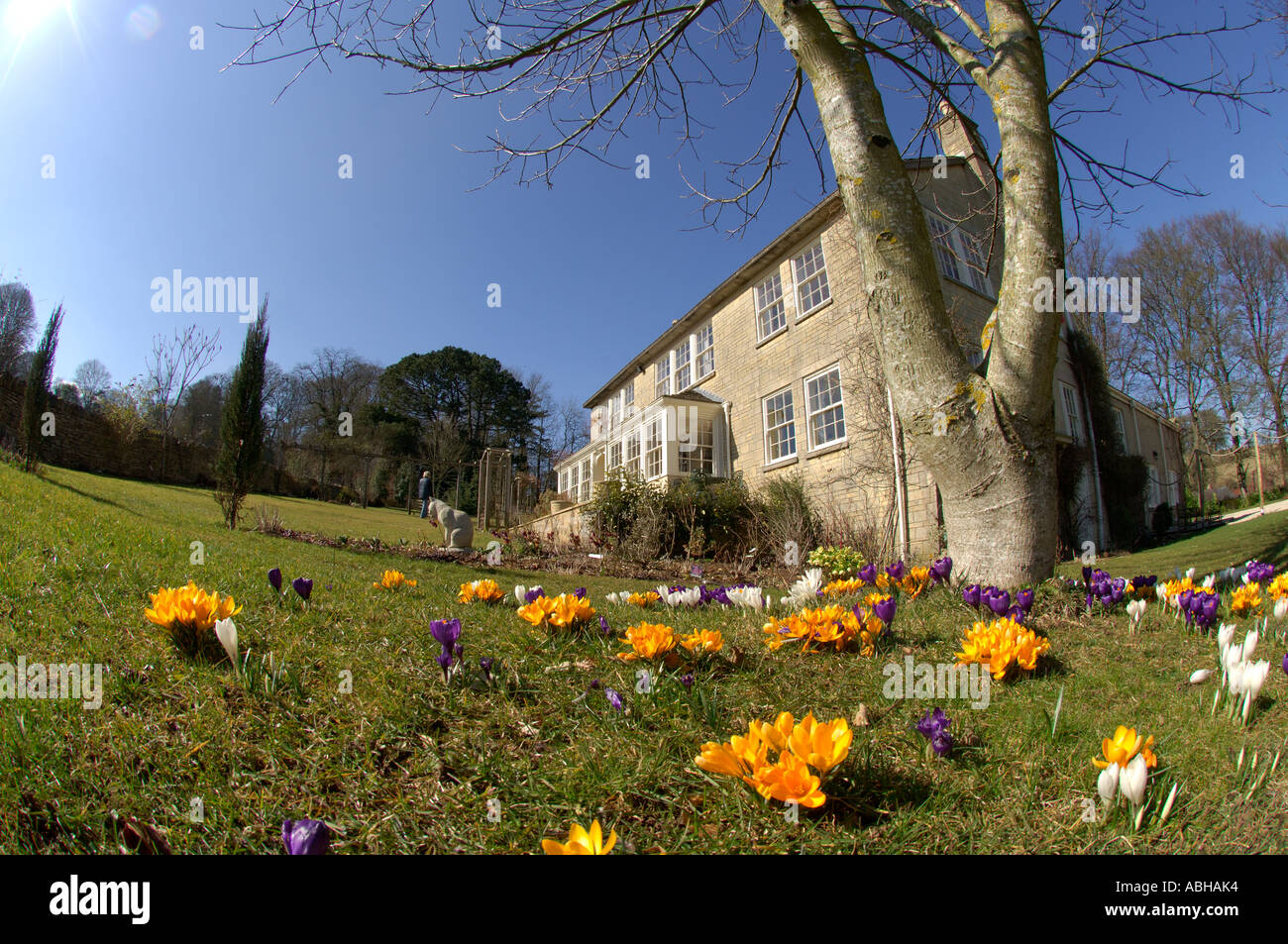 springtime in england in the cotswolds stock photo royalty free
