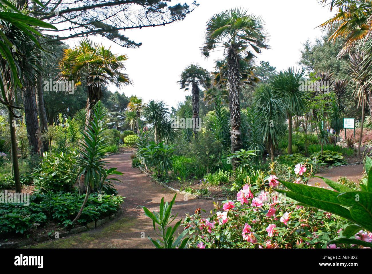 bournemouth tropical gardens stock photos u0026 bournemouth tropical