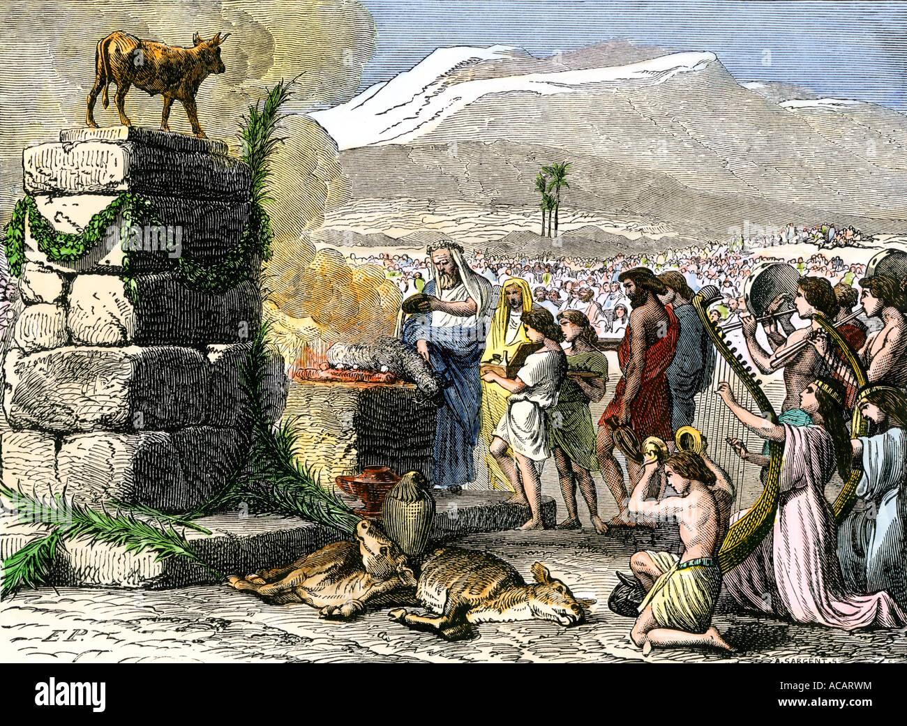 Free coloring page golden calf - Animal Sacrifice To Worship A Golden Calf In Biblical Times Stock Image