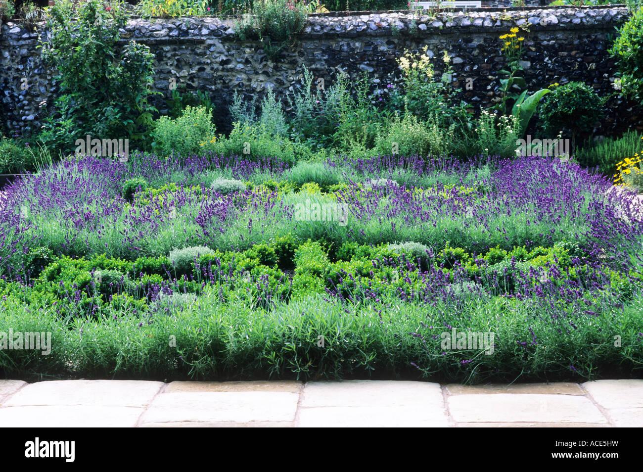 Herb knot garden lavender box hedges gardens herbs hedge for Herb knot garden designs