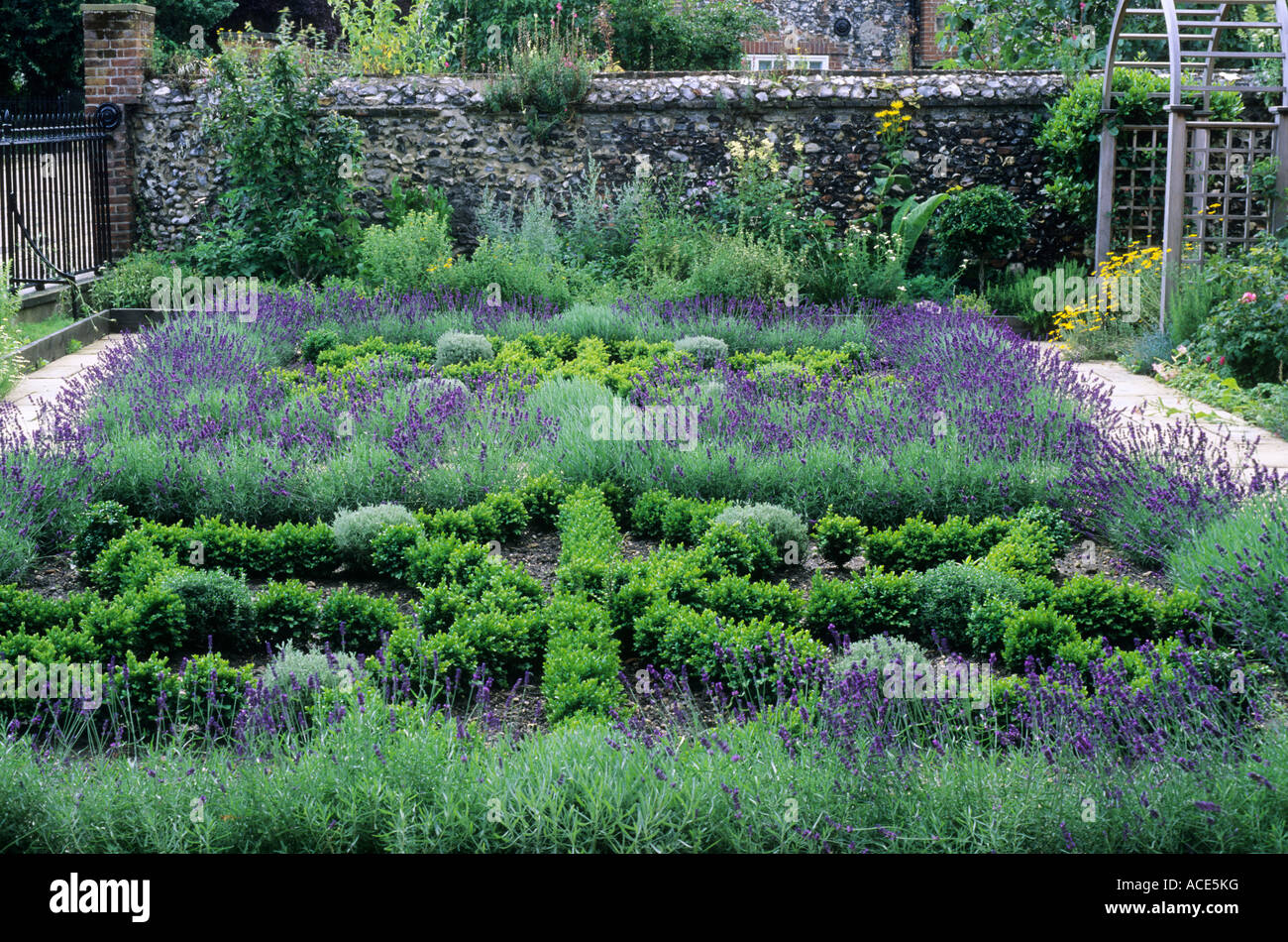 Herb knot front garden lavender box hedges paving Stock