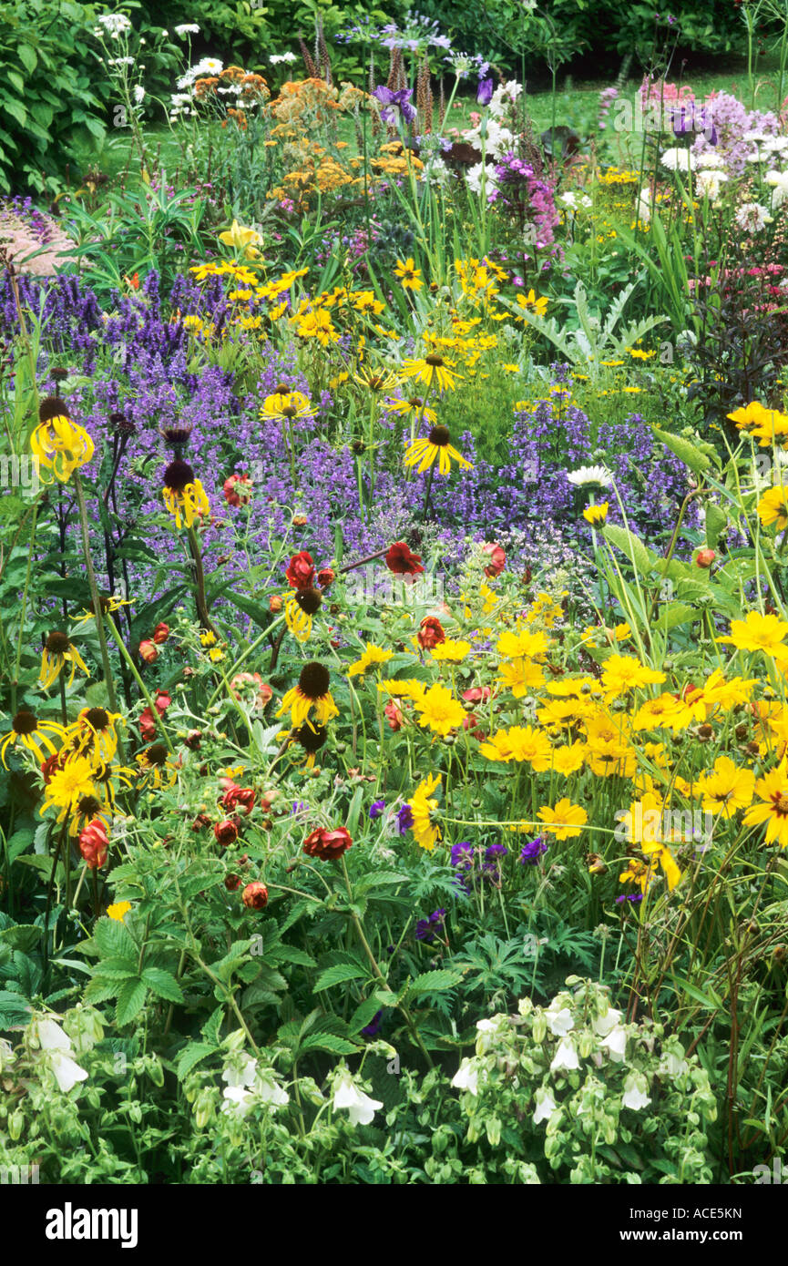 july garden border, all colours, perennials, plants, flowers