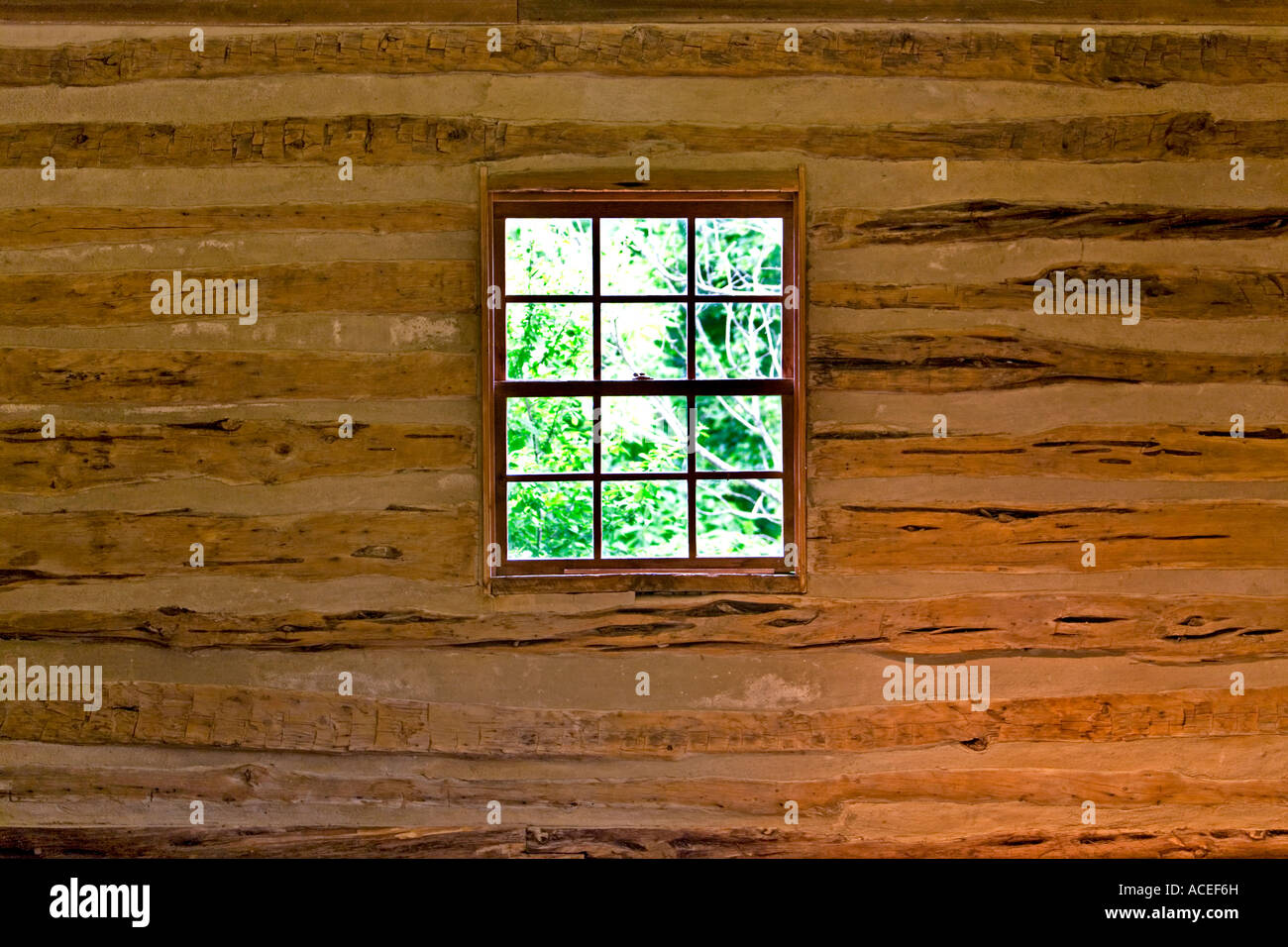 Log cabin window looking out into forest walls and