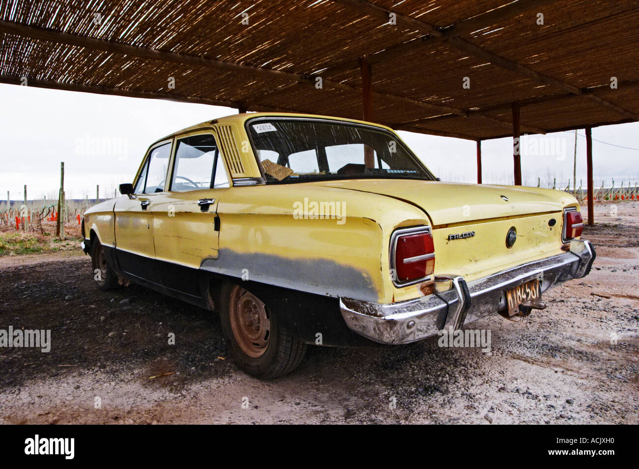 Old classic car Ford falcon from the 1960s 1960 60s 60 yellow under ...