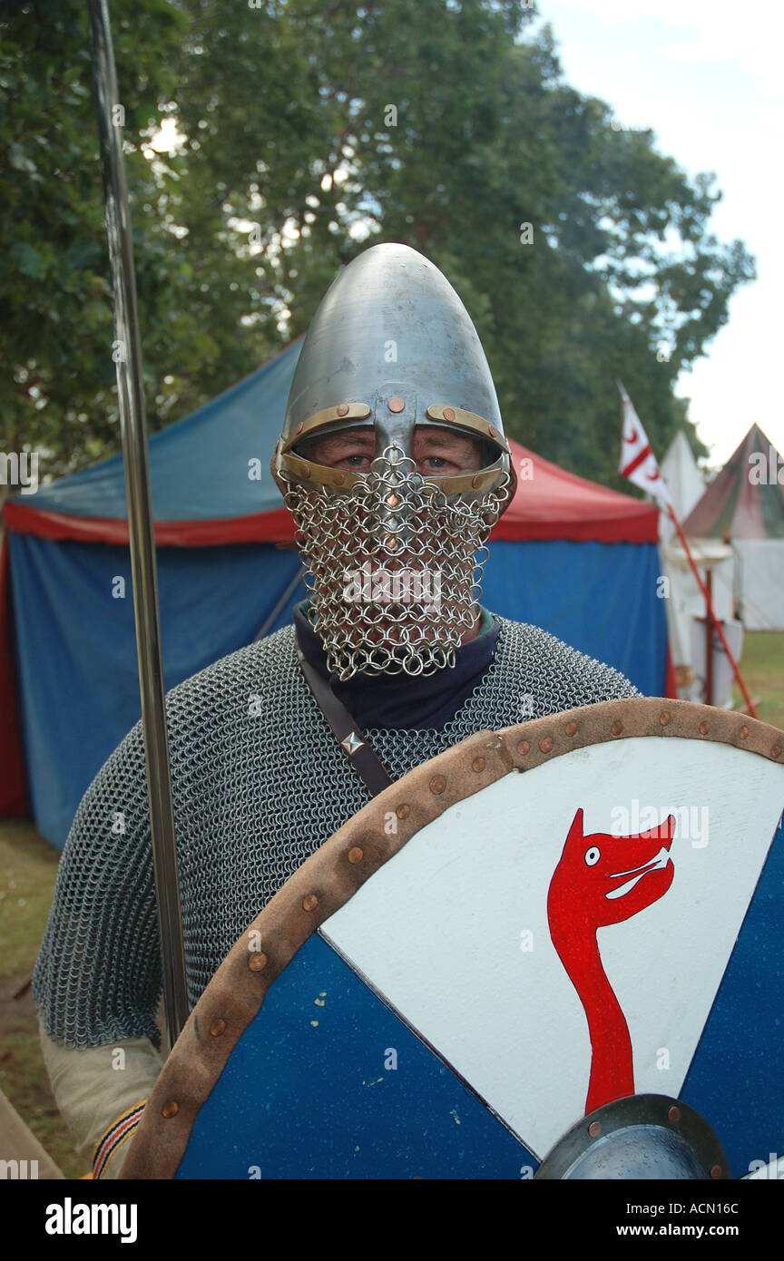 helmet and chain mail armour on viking dragon shield sword