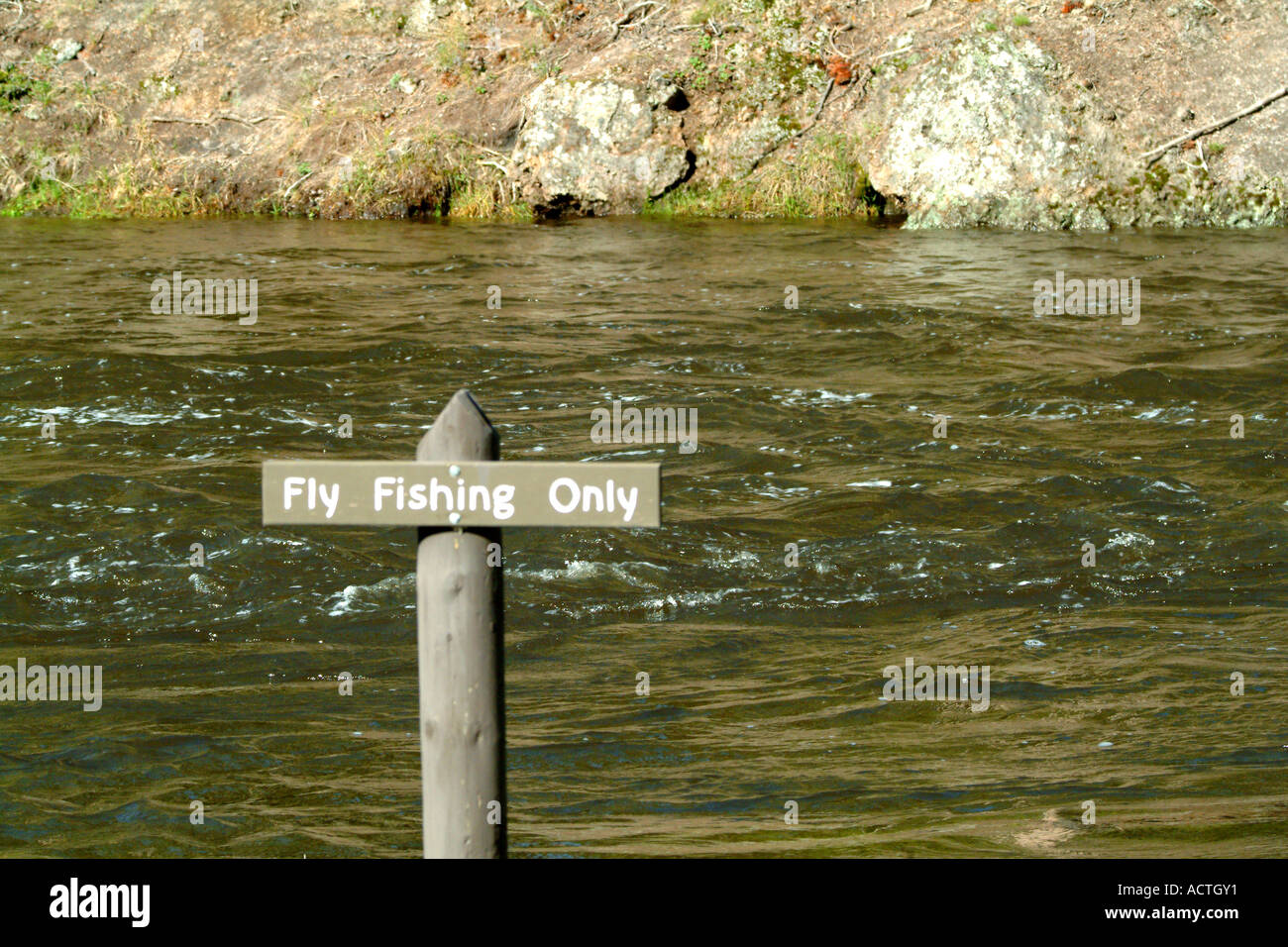 Fly fishing only sign along firehole river yellowstone for Fly fishing yellowstone river