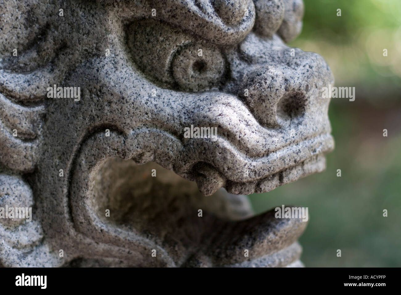 Chinese Gargoyle Stock Photo Royalty Free Image 13257177