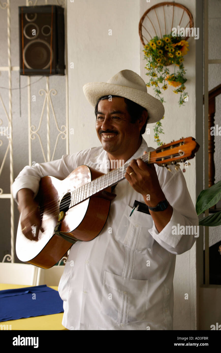 traditional-son-jarocho-musician-perform