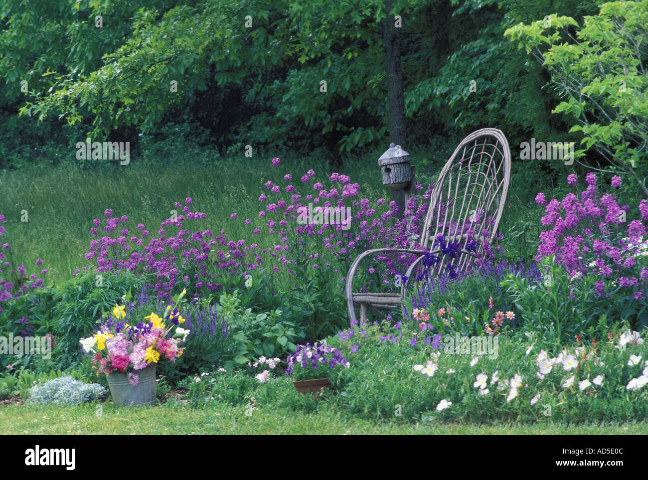 A woman 39 s garden rustic bent willow chair and birdbox in blooming stock photo royalty free - Rustic flower gardens ...